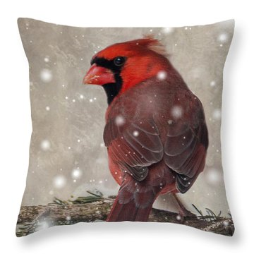 Male Cardinal In Snow #1 Throw Pillow