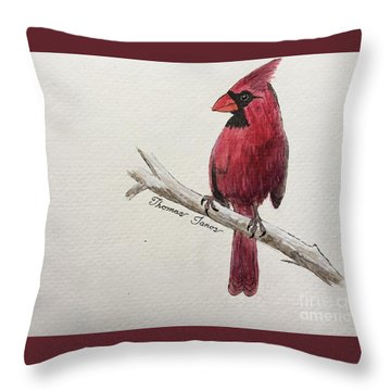 Male Cardinal In Winter Throw Pillow