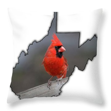 Male Cardinal One Of The Most Recognizable Birds Throw Pillow