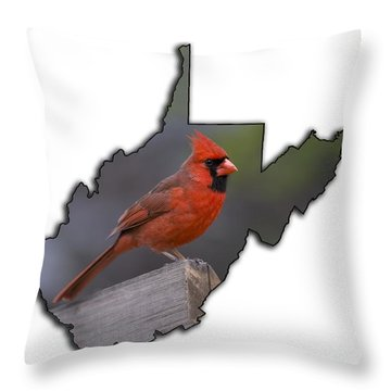 Male Cardinal Perch  Throw Pillow