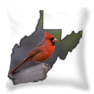 Male Cardinal Perched On Rail Throw Pillow