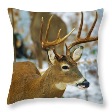 Male Deer In Snow Throw Pillow