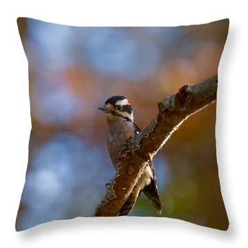 Throw Pillow featuring the photograph Male Downy Woodpecker by Robert L Jackson