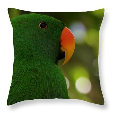 Male Eclectus Parrot Throw Pillow