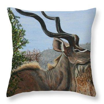 Male Kudu Antelope Throw Pillow by Betty-Anne McDonald