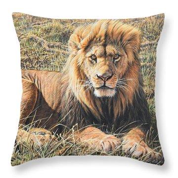Male Lion Portrait Throw Pillow