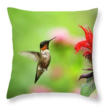 Male Ruby-throated Hummingbird Hovering Near Flowers Throw Pillow