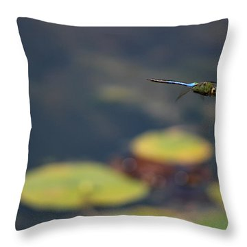 Malibu Blue Dragonfly Flying Over Lotus Pond Throw Pillow