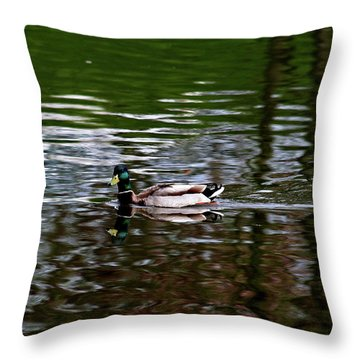 Mallard Throw Pillow by Bonnie Bruno