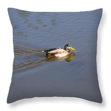 Mallard Duck Burgess Res Co Throw Pillow