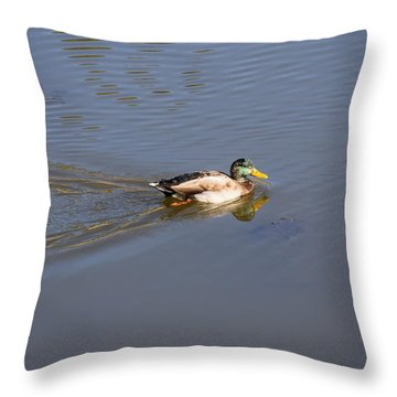 Mallard Duck Burgess Res Co Throw Pillow