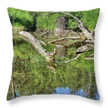 Mallard Duck Throw Pillow by Jim Sauchyn