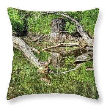 Mallard Duck On Pond Throw Pillow by Jim Sauchyn