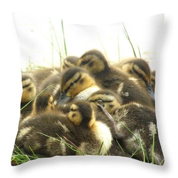 Throw Pillow featuring the photograph Mallard Ducklings by Angie Rea