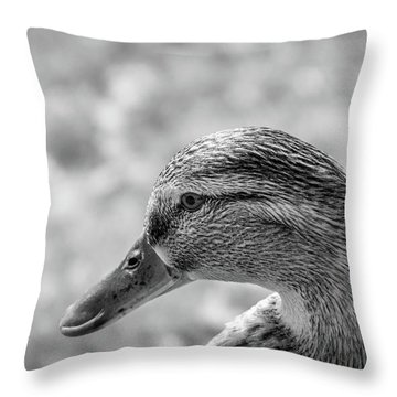 Mallard In Monochrome Throw Pillow