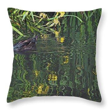 Mallard In The Marsh Throw Pillow