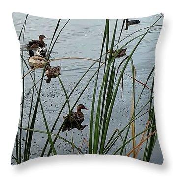Mallard Migration Throw Pillow
