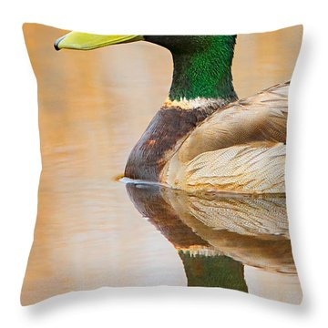 Mallard Mirror Throw Pillow
