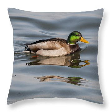 Mallards And Reflection Throw Pillow