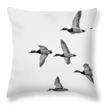 Mallards Throw Pillow