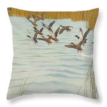 Mallards In Autumn Throw Pillow by Newell Convers Wyeth