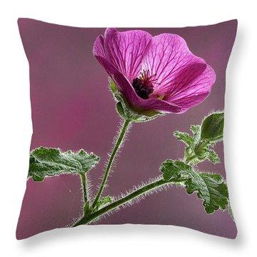 Mallow Flower 3 Throw Pillow