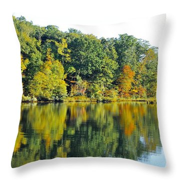 Mallows Bay Throw Pillow
