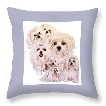 Maltese Throw Pillow by Barbara Keith