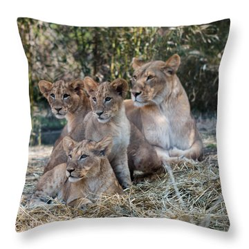 Throw Pillow featuring the photograph Mama And Her Girls by Cathy Donohoue