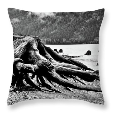 Mama Bear And Her Cub Throw Pillow