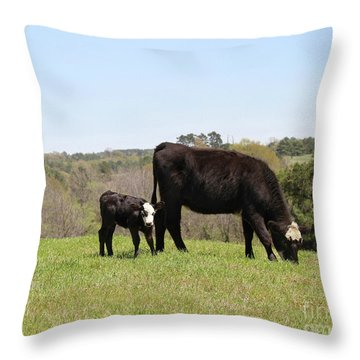 Mama Cow And Calf In Texas Pasture Throw Pillow