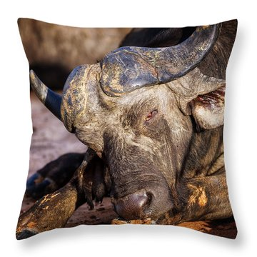Mama Said There'd Be Days Like This Throw Pillow