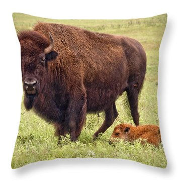 Mama Watching Over Baby Throw Pillow