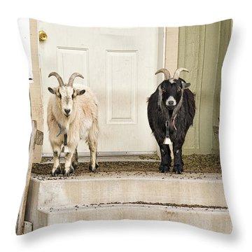 The Goat Guard Throw Pillow