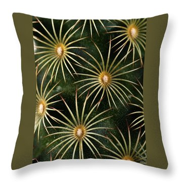 mammillaria elongata Cactus  Throw Pillow by Catherine Lau