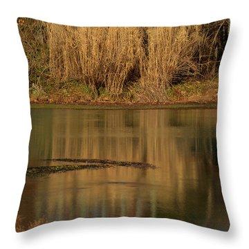 Mammoth Spring Arkansas Throw Pillow by Douglas Barnett
