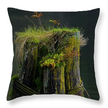Man Made Island-signed-#2127 Throw Pillow by J L Woody Wooden