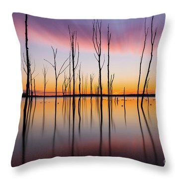Throw Pillow featuring the photograph Manasquan Reservoir Long Exposure by Michael Ver Sprill