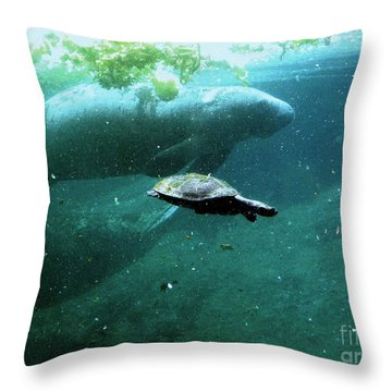 Throw Pillow featuring the photograph Manatee And Sea Turtle by Terri Mills