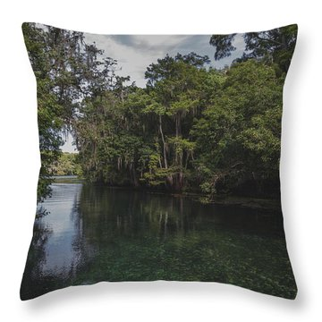Manatee Springs Throw Pillow