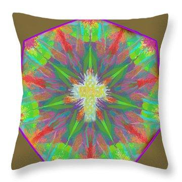 Mandala 1 1 2016 Throw Pillow