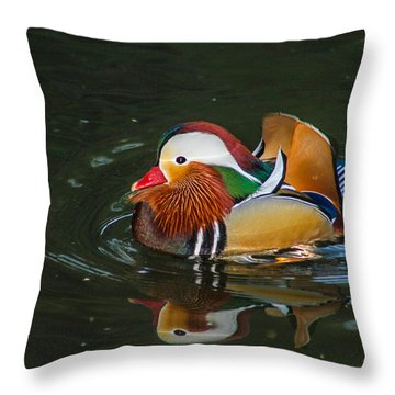 Mandarin 2 Throw Pillow by Robert Hebert