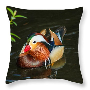 Mandarin 3 Throw Pillow by Robert Hebert