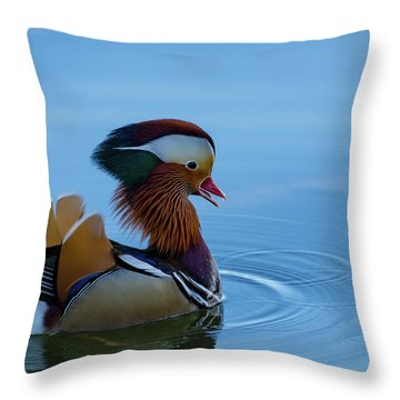 Majestic Mandarin Duck Throw Pillow