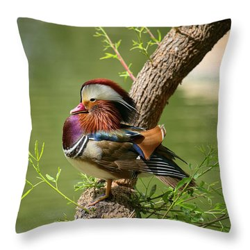 Mandarin Duck On Tree Throw Pillow