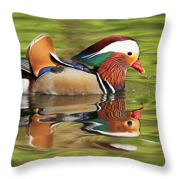Mandarin Duck Throw Pillow by Ram Vasudev