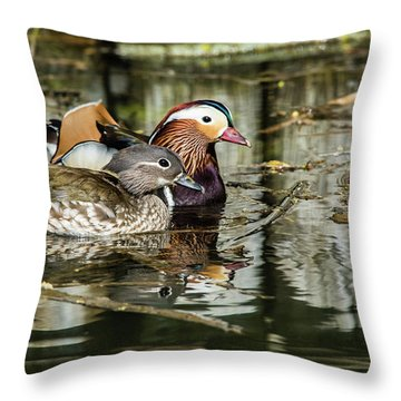 Mandarin Ducks The Couple Throw Pillow by Torbjorn Swenelius