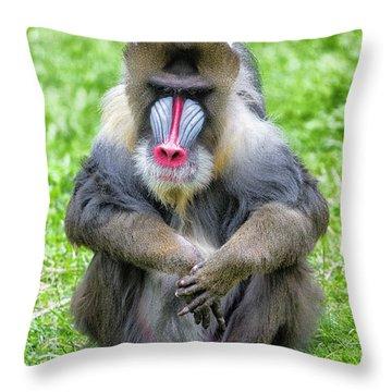 Mandrill Throw Pillows