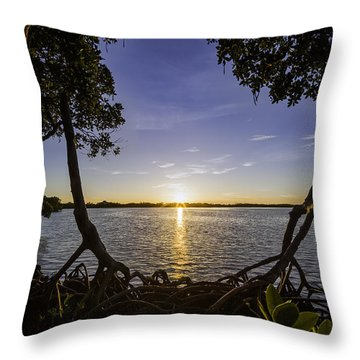 Mangrove Frame Throw Pillow