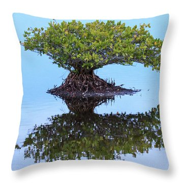 Mangrove Reflection Throw Pillow